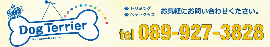 089-927-3828